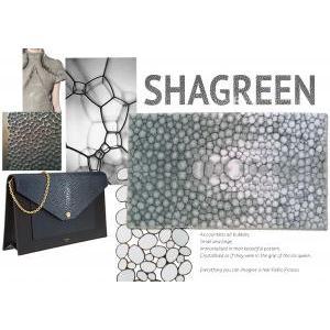 shagreen logo